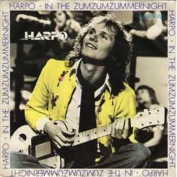 """HARPO - IN THE ZUMZUM ZUMMERNIGHT (7"""" vinyl)"""