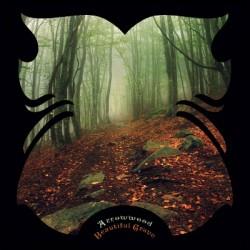 ARROWWOOD - BEAUTIFUL GRAVE (CD)