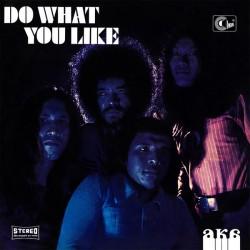 AKA - DO WHAT YOU LIKE (LP)