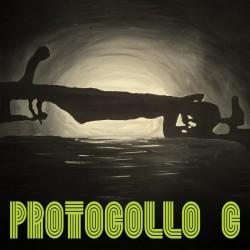 PROTOCOLLO C - PROTOCOLLO C (CD)