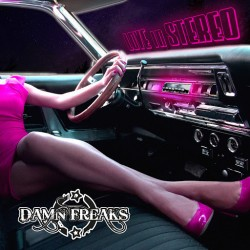 DAMN FREAKS - LOVE IN STEREO  (CD)